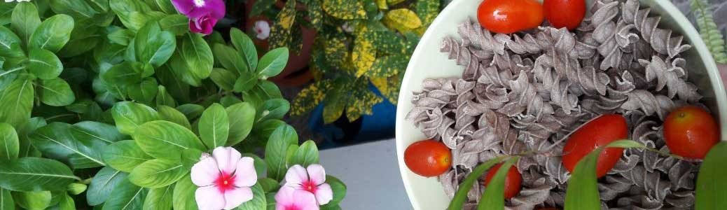 pasta_and_flowers
