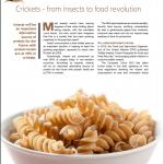 TIR Thailand Invest Review Cricket Pasta